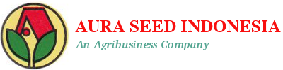 aura-seed