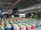 Mengintip TALADTHAI, Pasar Agribisnis Terbesar di Thailand