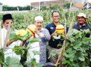 Lowongan Kerja Pertanian yang Dicari Setiap Tahunnya