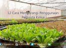 12 Cara Mengurangi Penggunaan Pestisida Kimia