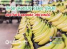 [Untuk Pemula] Tips dan Cara Menjadi Pemasok Sayur/Buah (Supplier) Di Supermarket